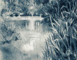 pond tranquil