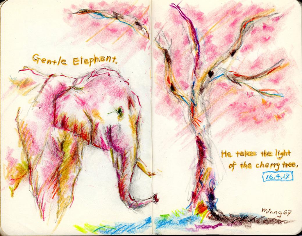 象と桜の光