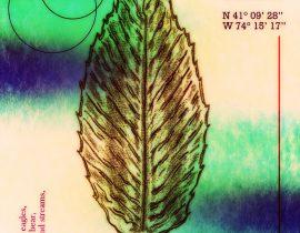 red adler full leaf