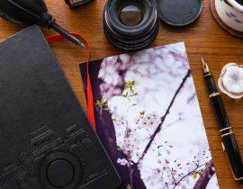 週末に撮ってきた桜を愛でる今朝のコーヒー