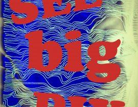 see big pix