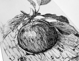 Apple – Moleskine 02