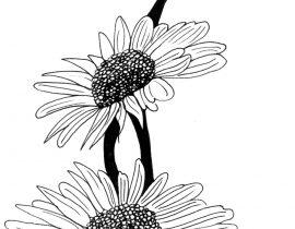 Big flowers  – Moleskine 01