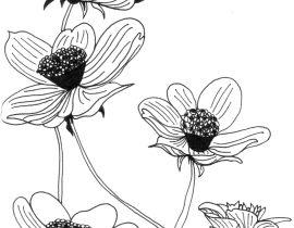 Flowers  – Moleskine 01
