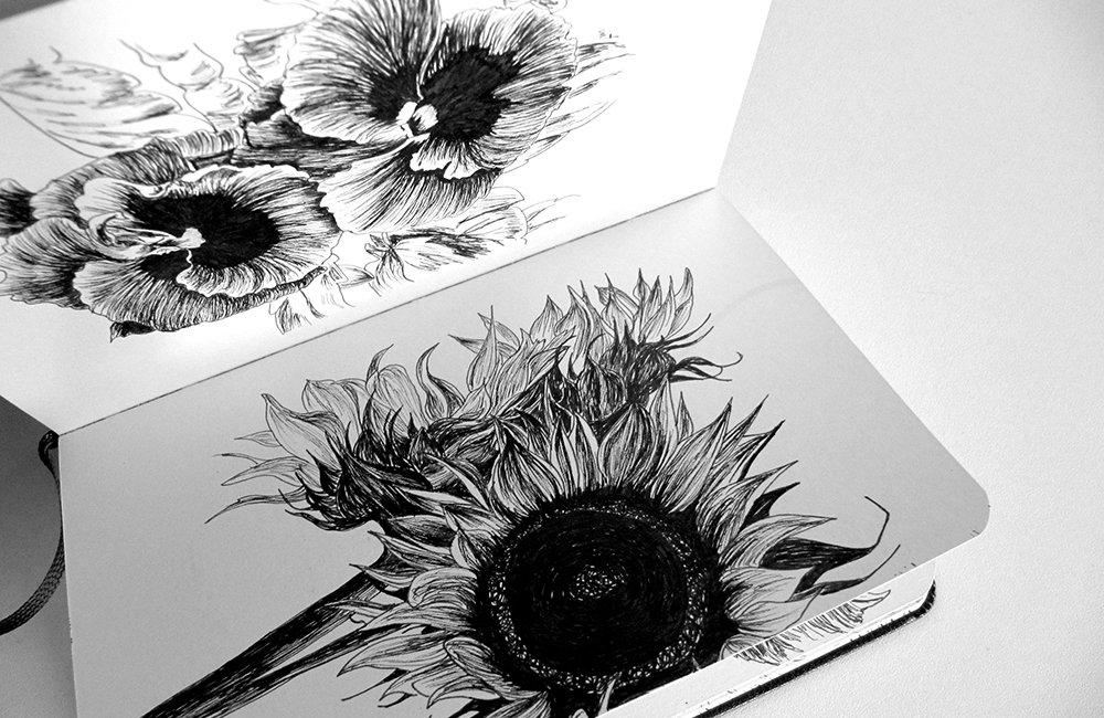 Sunflowers – Moleskine 02