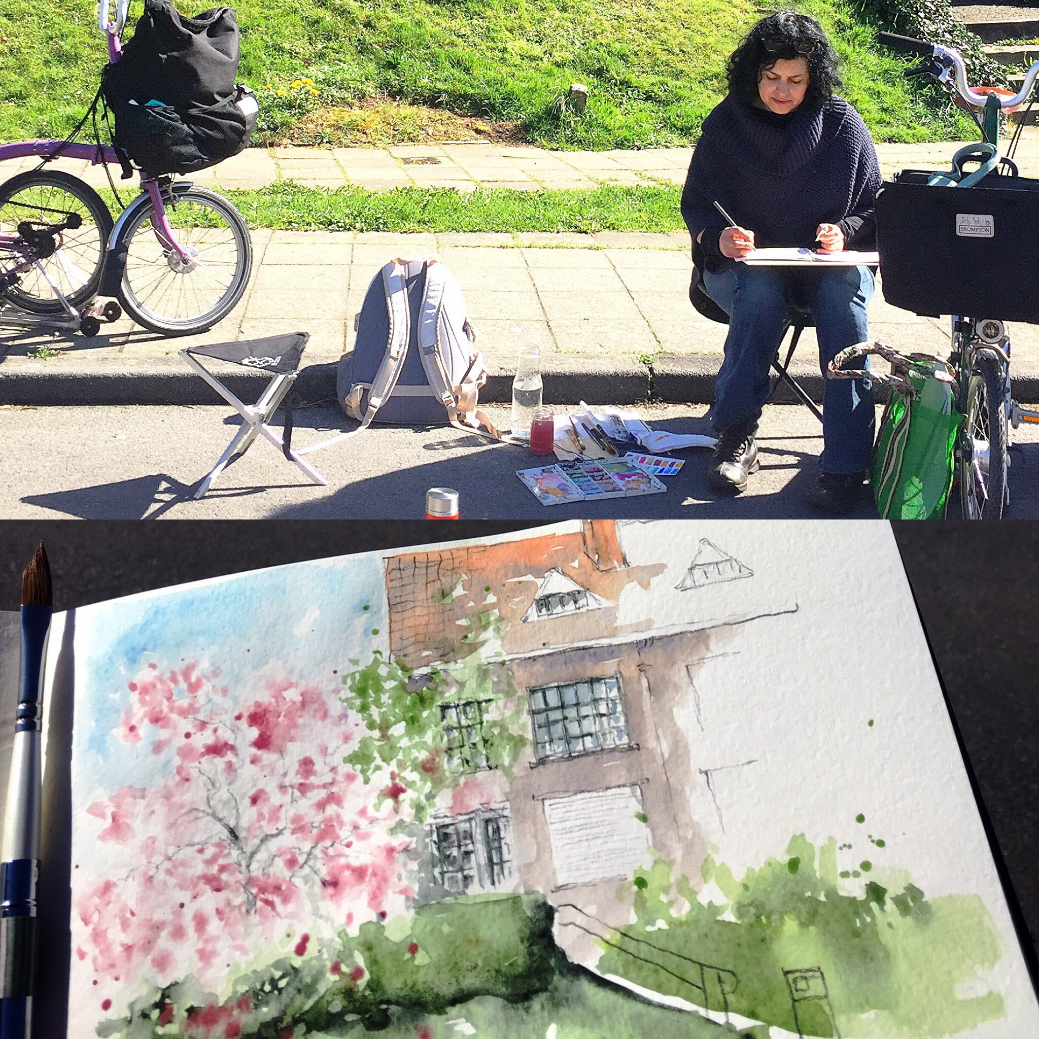 sketching Cherry Blossoms