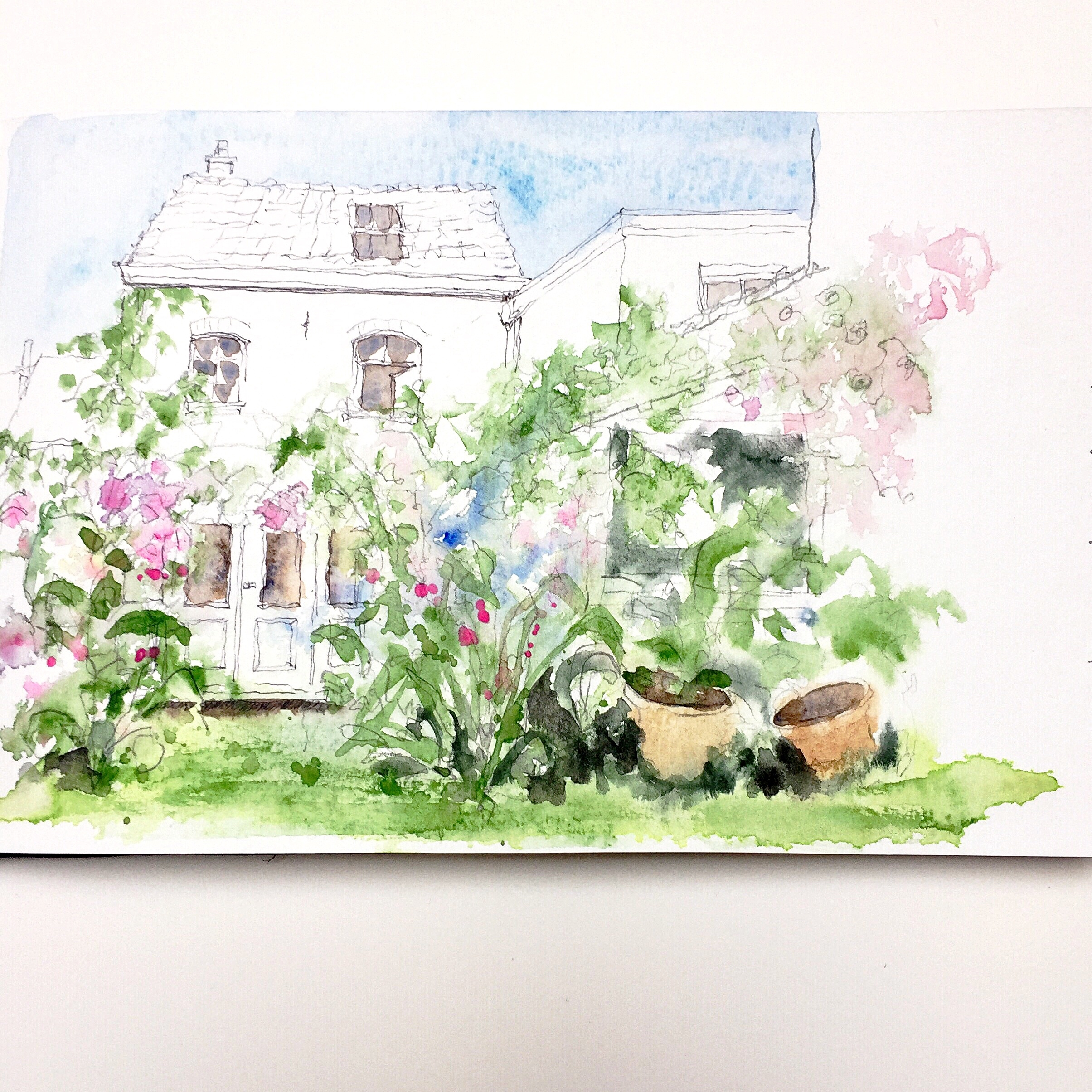 le jardin de Cécilia