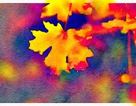 autumn in my veins