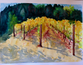 Portola Vineyards