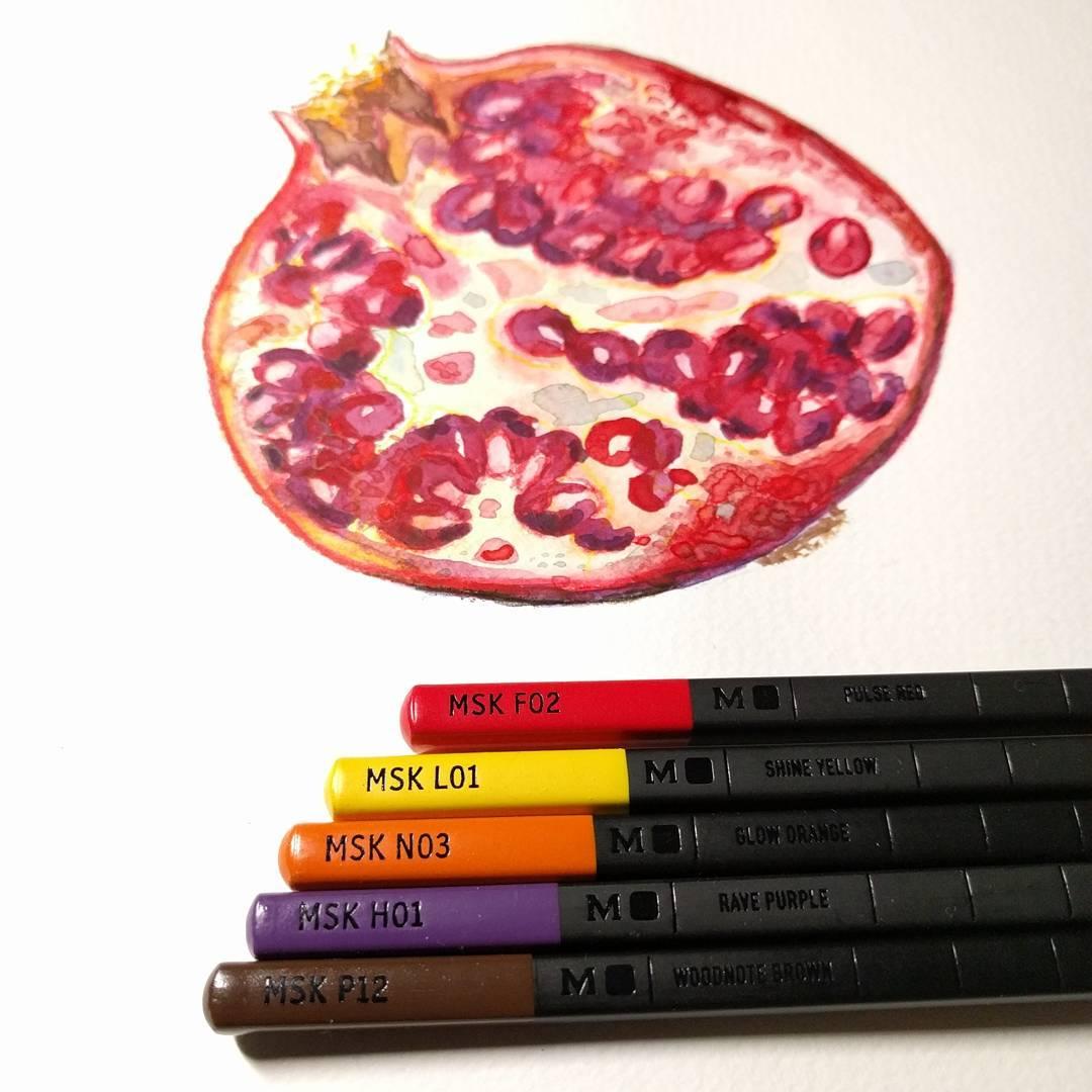 Pomegranate study 1