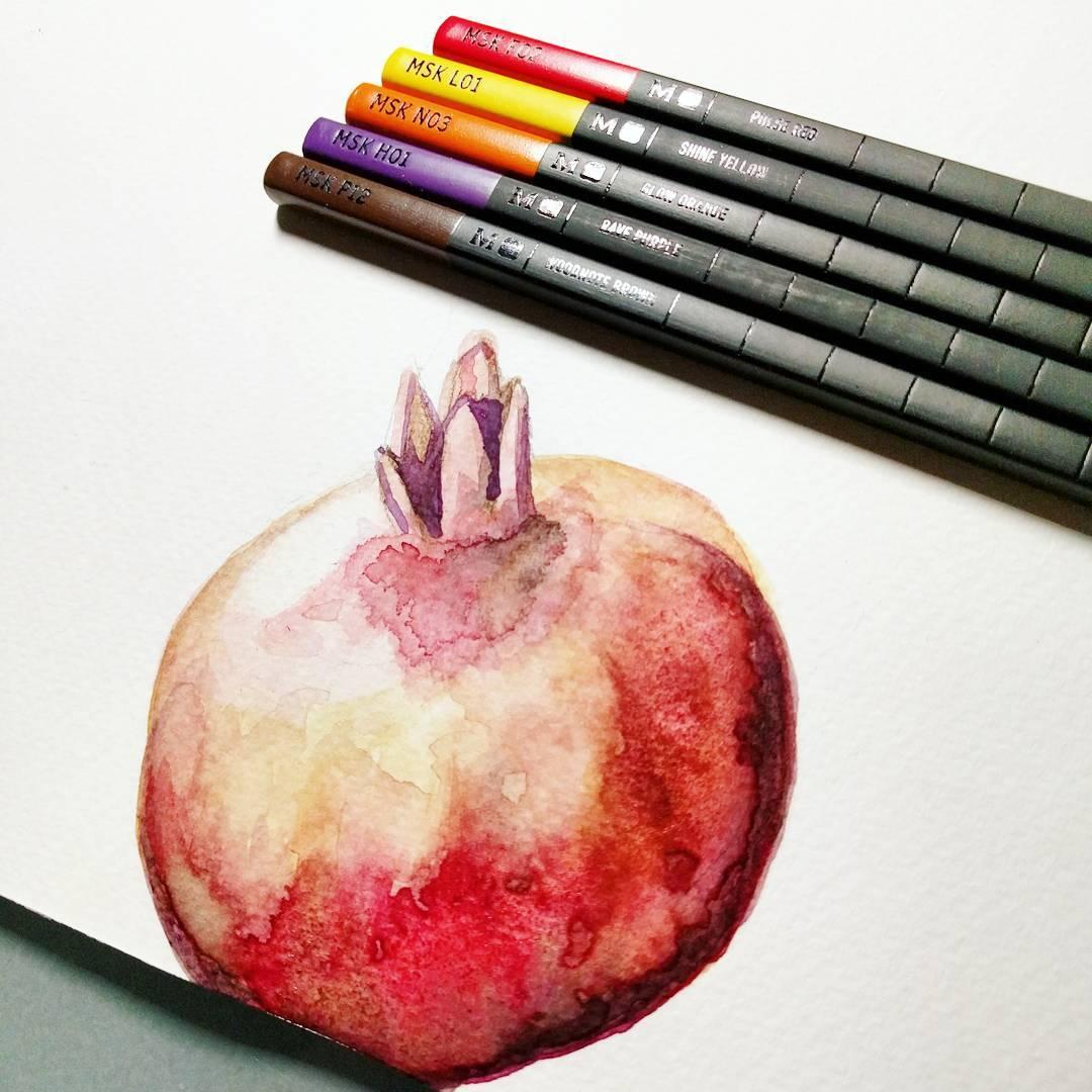 Pomegranate study 2