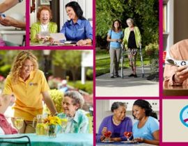 Elder Care Tampa