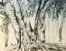 Bajan tree