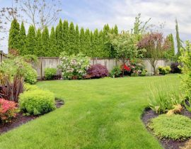 A must-read before you get a fence in your backyard