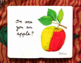 Or are you an apple?