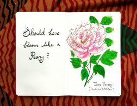 Should love bloom like a peony