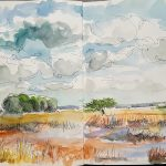 Drenthe in autumn colors