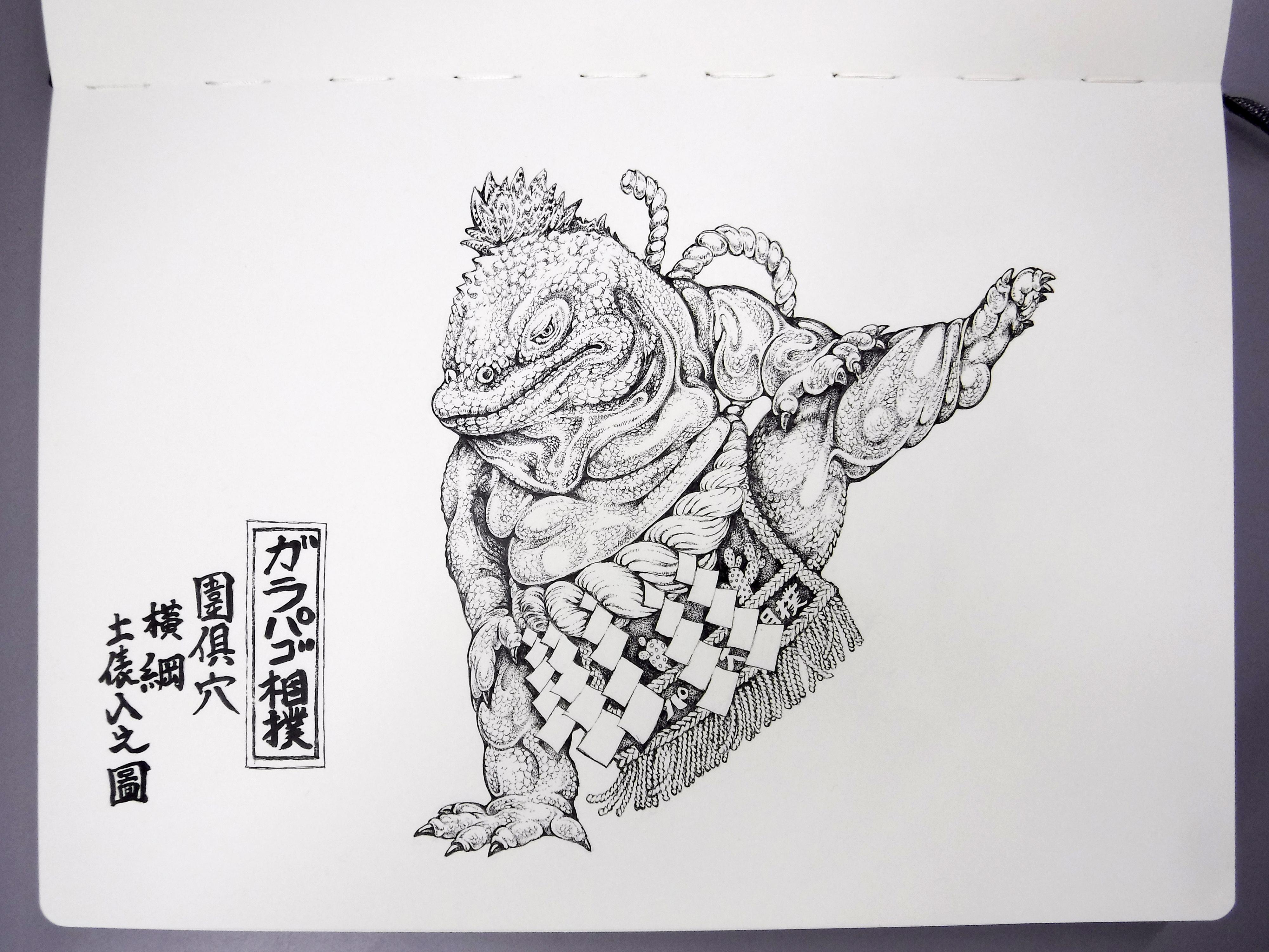 Galapago-sumo 02