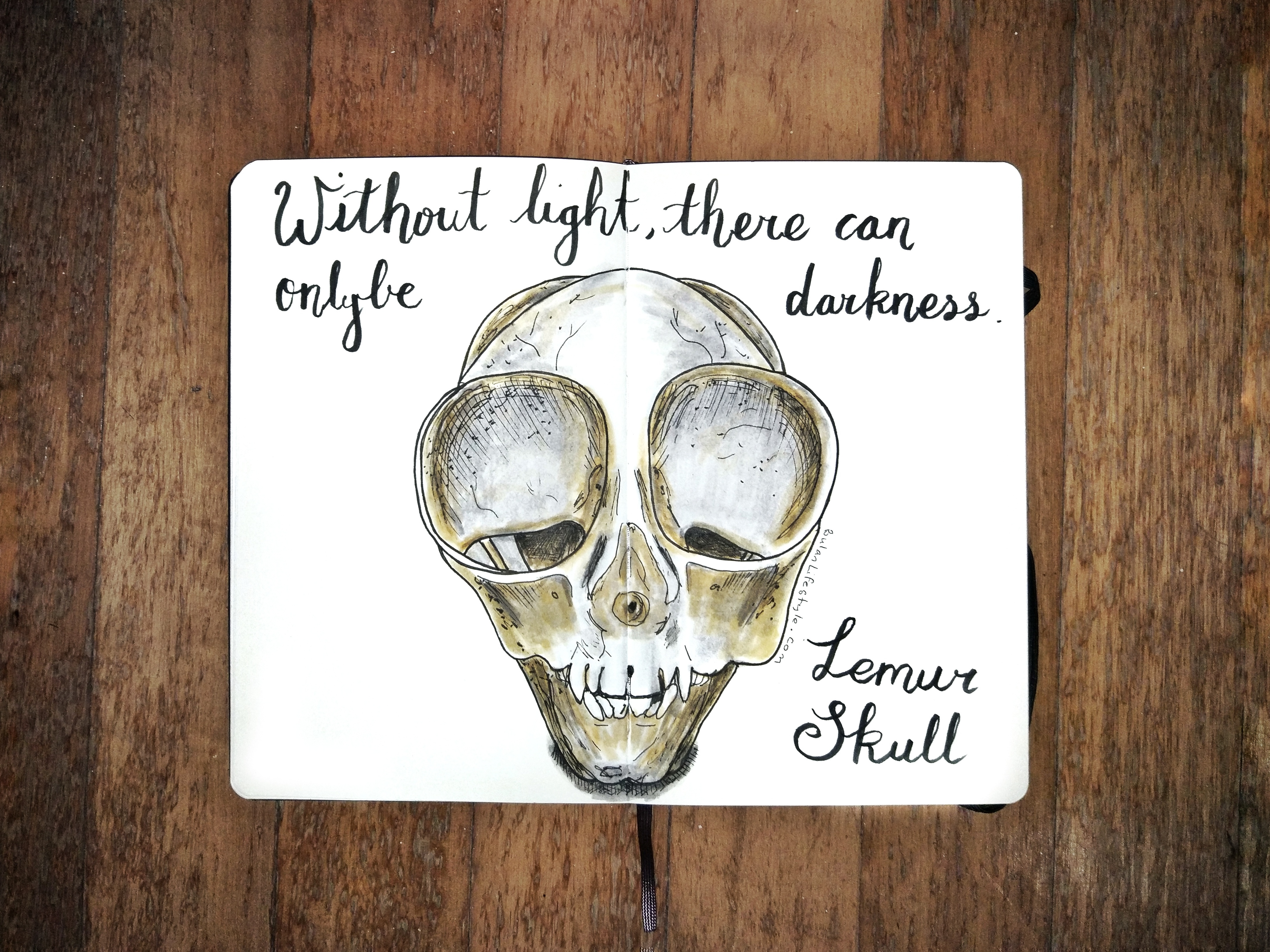Without light, there can only be darkness