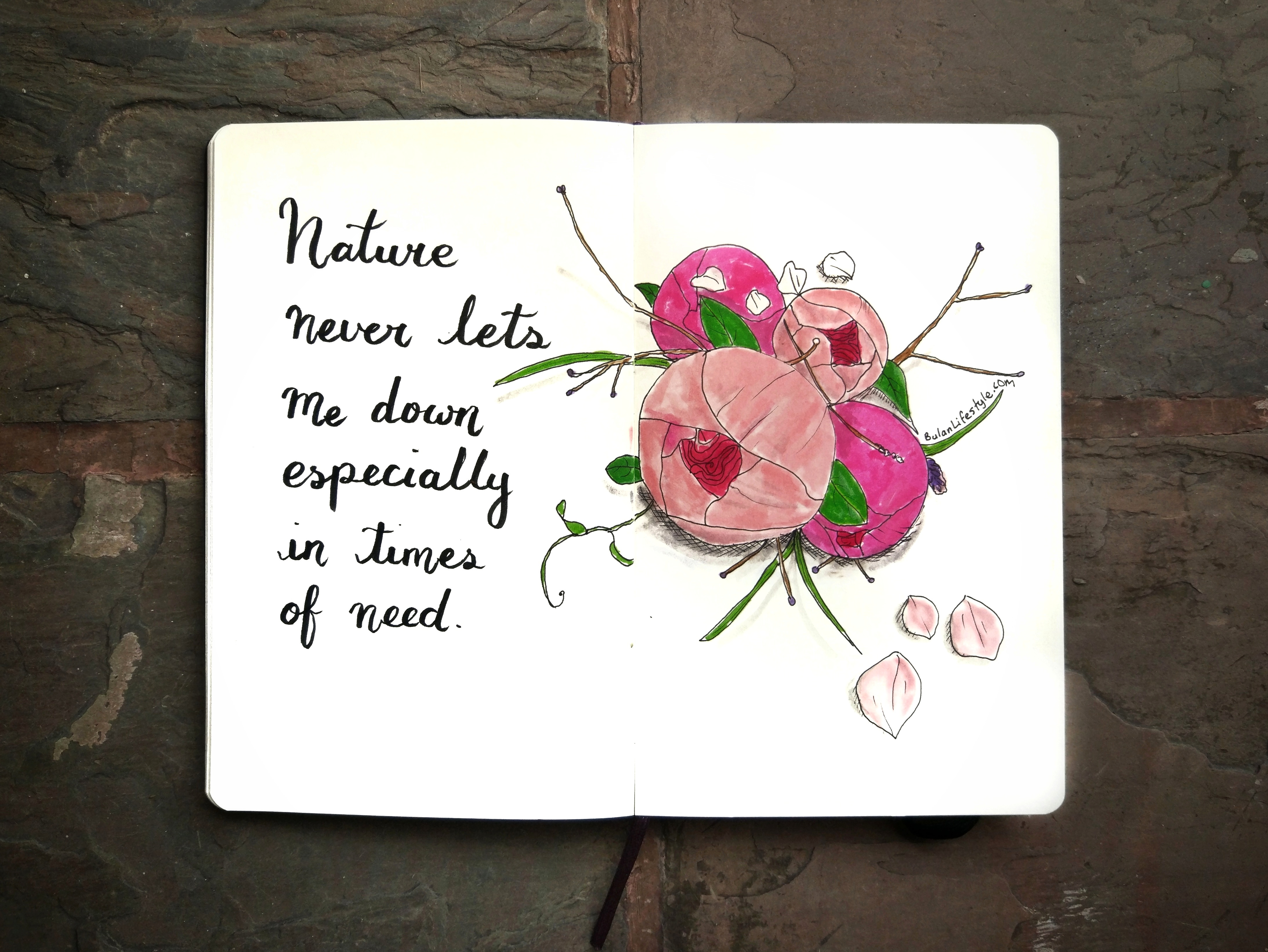 Nature never let's me down especially in times of need.