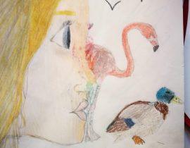 Myself & Birds