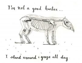 I'm not a good hunter… I stand around and graze all day