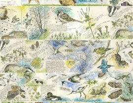 Nature journey – Sketchbook 5