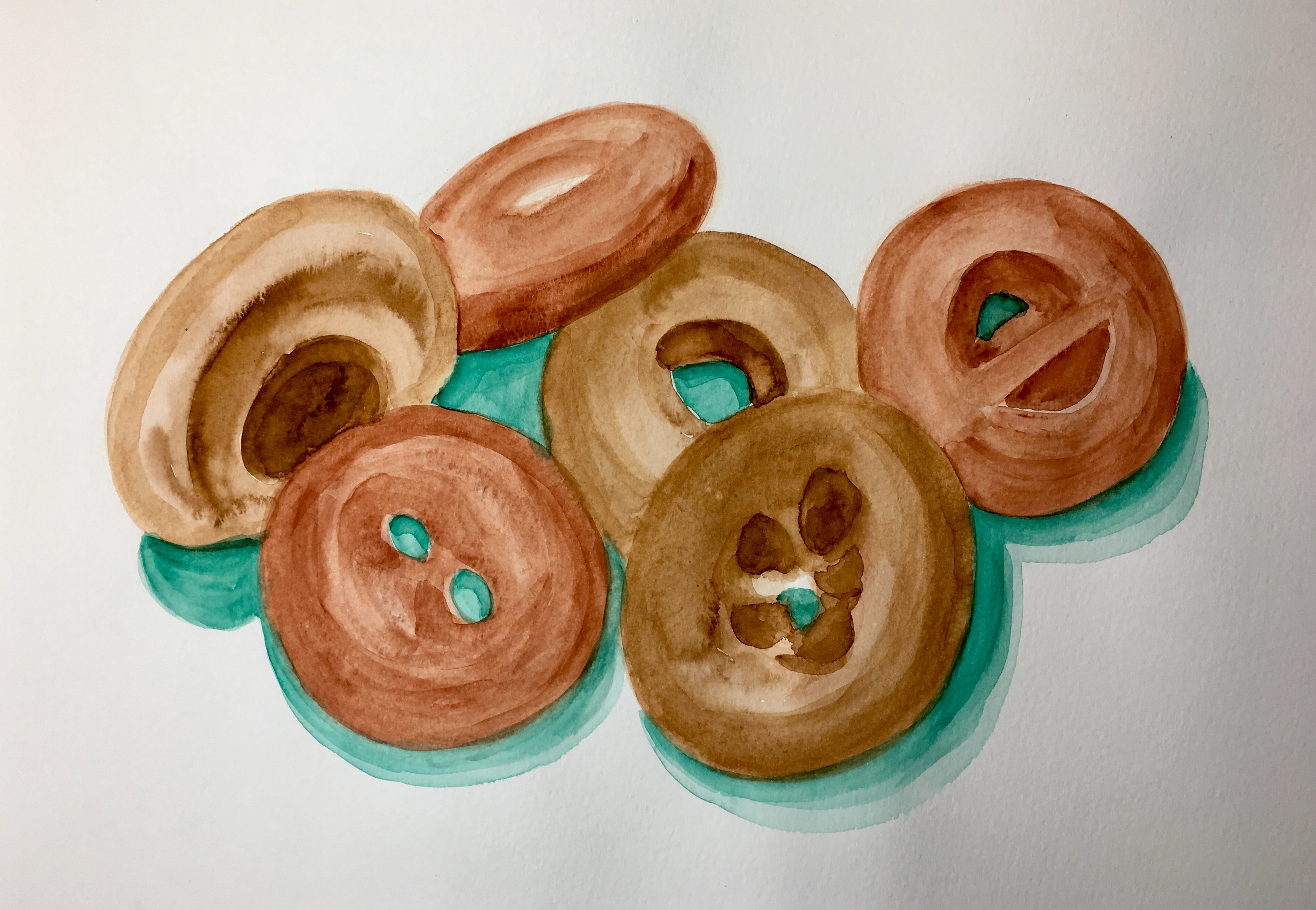 Six cake donuts by Maple donuts since 1946