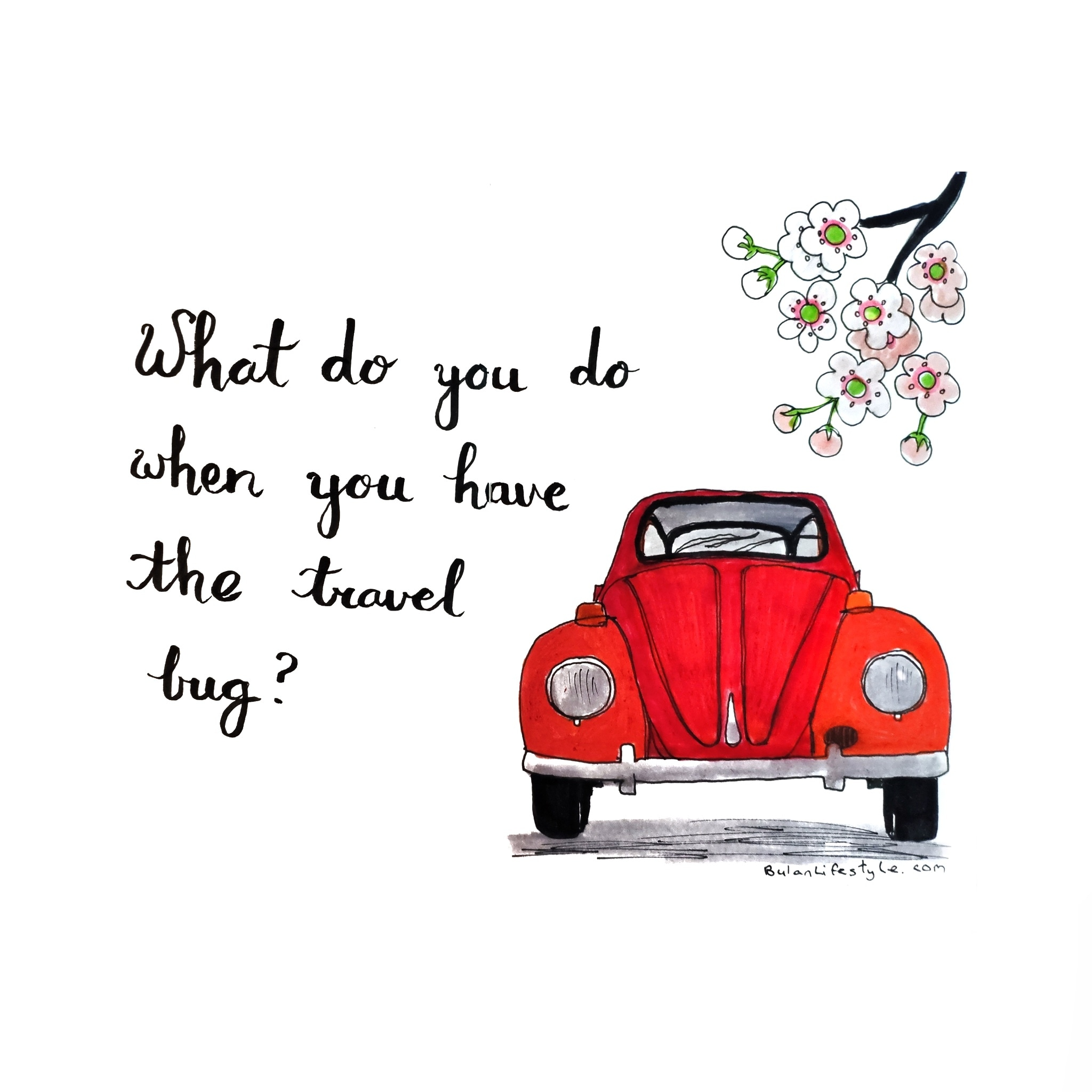 What do you do when you have the travel bug?