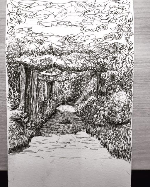 Woods of Slovenia