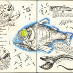 Moleskine Sketch Book 2016
