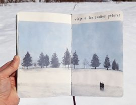 Viaje a los sueños polares