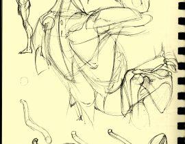 anatomizing I