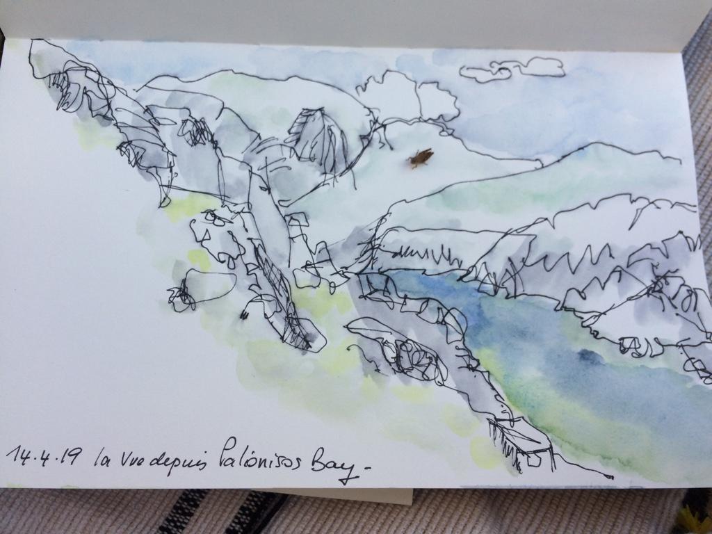 une sauterelle s'est posée sur mon dessin