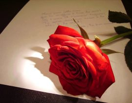 Love poems!