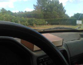 Prospection en voiture 37