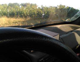 Prospection en voiture 41