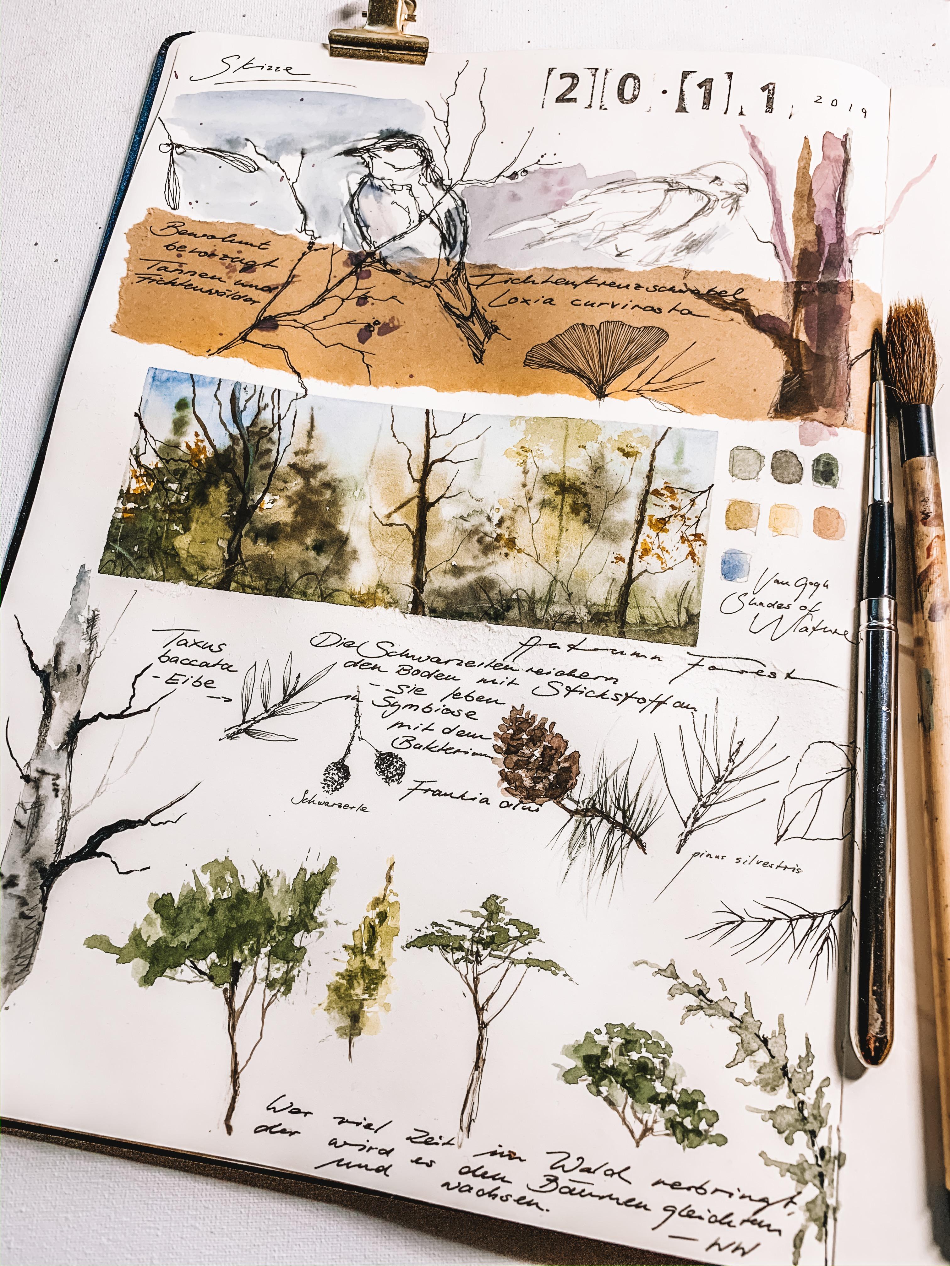 Pressliz x Moleskine | forest inspired