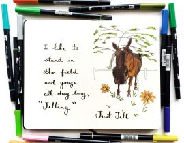 Just Jill the Polo pony