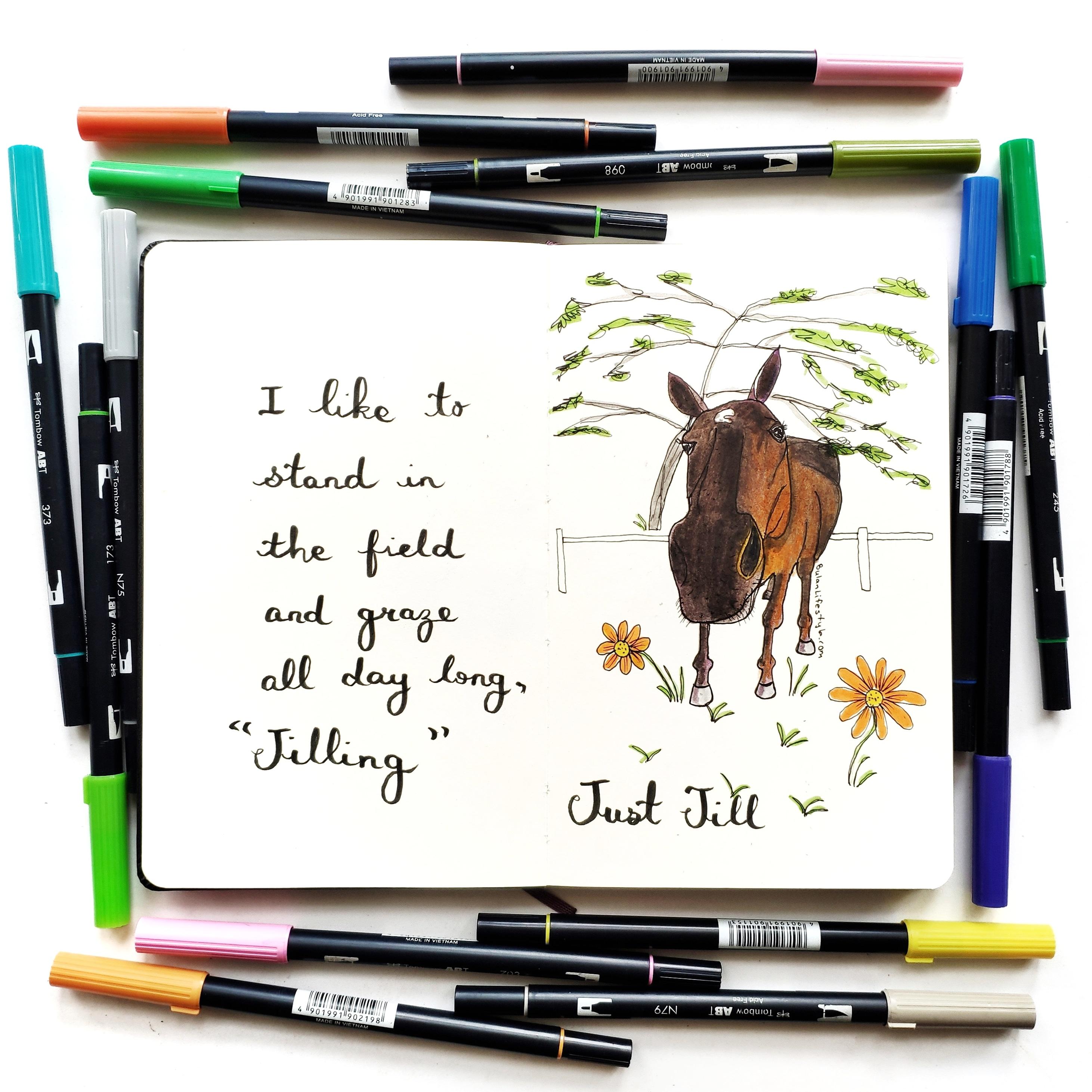 Just Jill the Polo pony