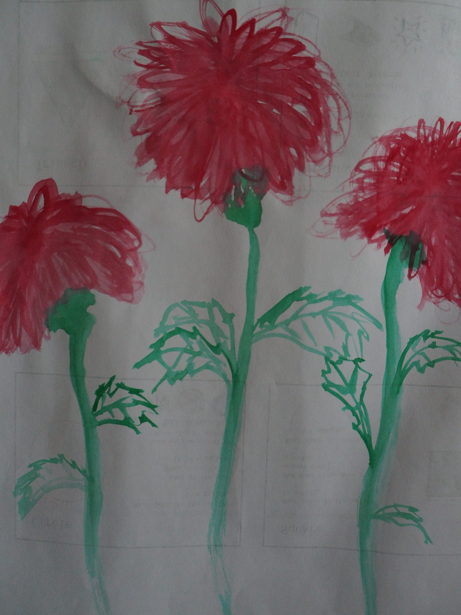 3 Red Flowers