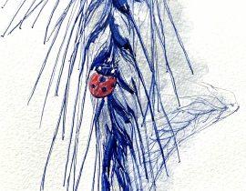 Wheat and Ladybug