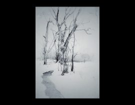 snow trancelike