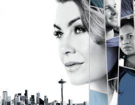 Watch — 'Grey's Anatomy' Season 16 Episode 14 (Full Episodes) On ABC (US)