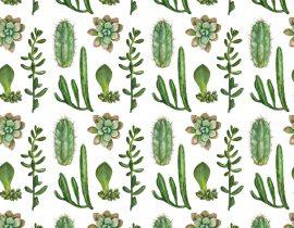 Joice Wang Cactus Garden