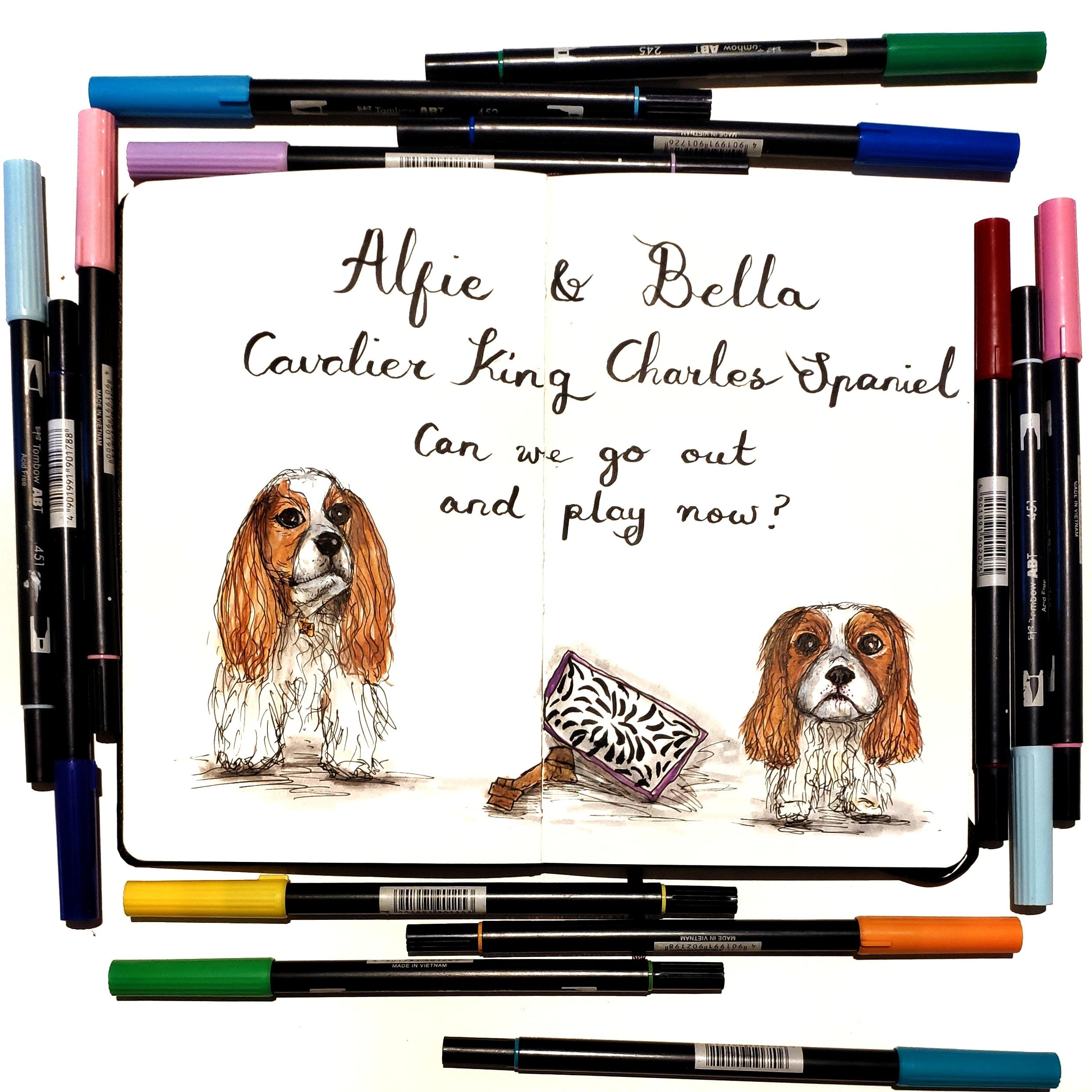 Pet Portraits: cavalier king charles spaniels
