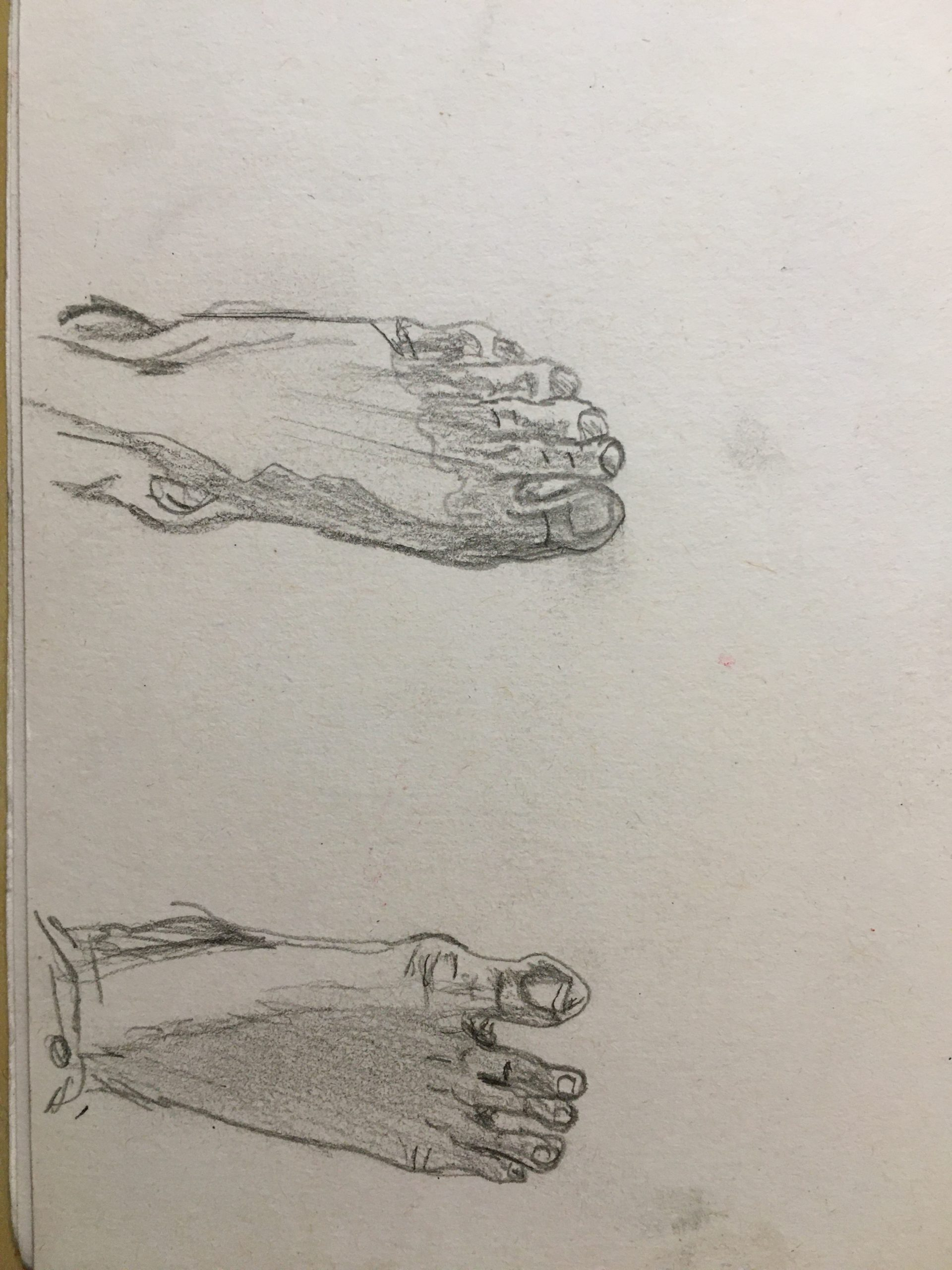 Foot Studies 2 and 3