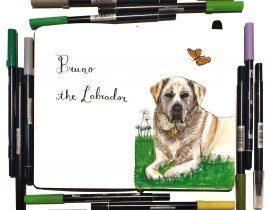 Bruno the Labrador