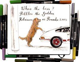 Pebbles the golden retriever vs Porsche 2.7 RS