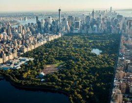 Hidden Gems in Central Park